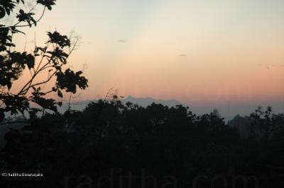 Adam's Peak (Sri Pada)