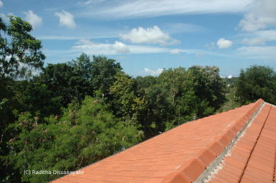 Calicut clay tile roof